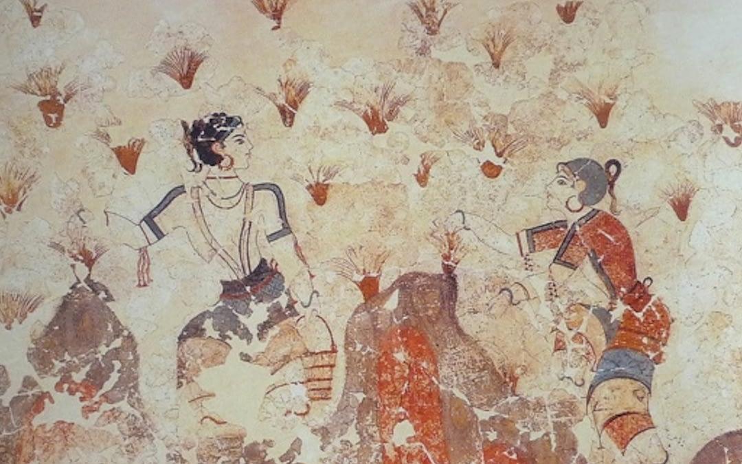 Von griechischen Sagen bis in die Neuzeit: die Historie des Safrans